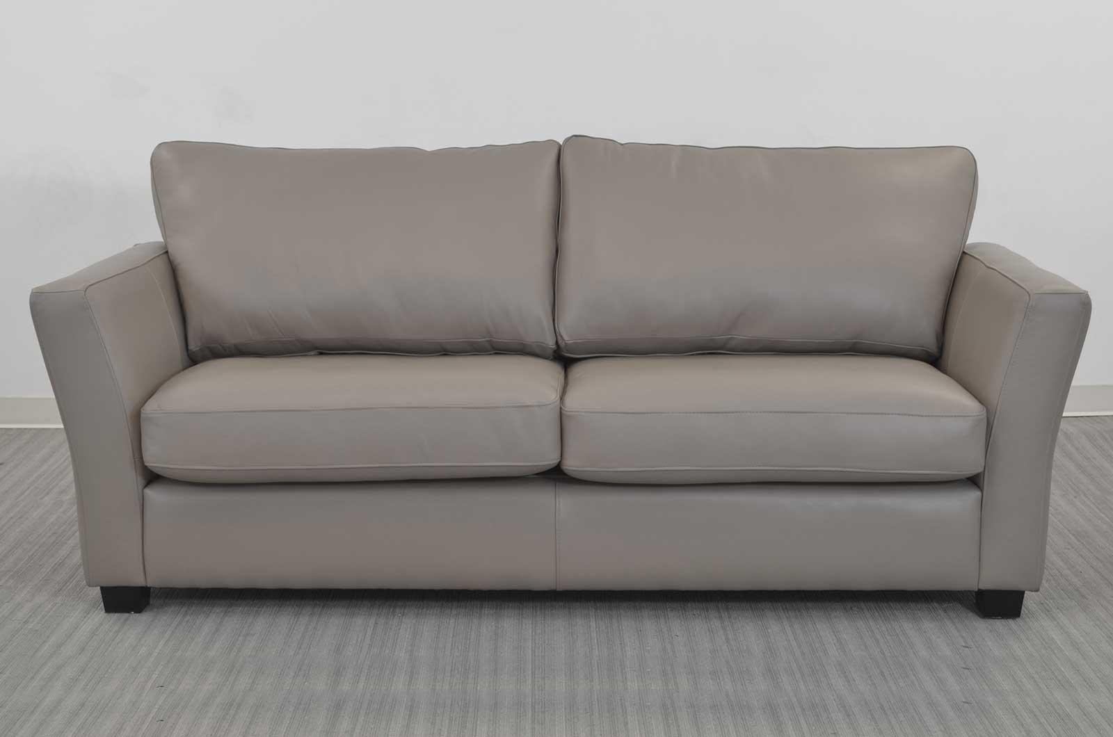 Elegant Two Cushion Sofa